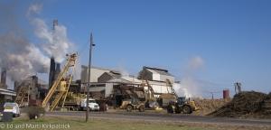 Sugar cane processing plant