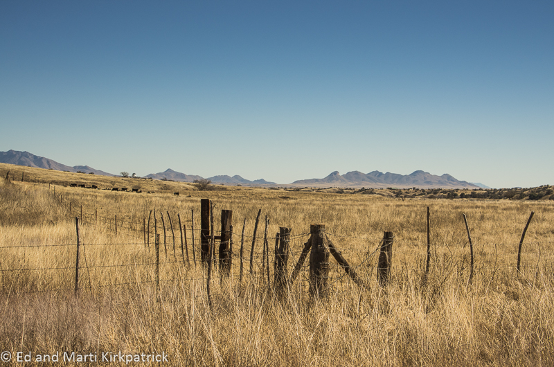 High Plains Grassland