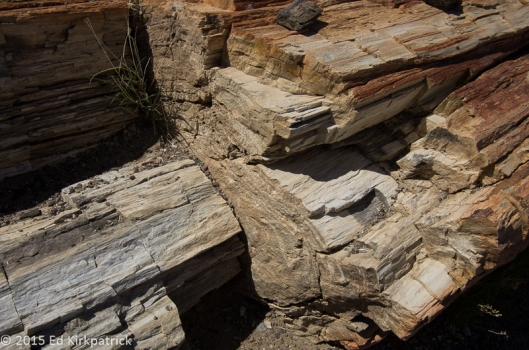 Is it wood? Nope, it's really rock.