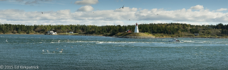 Incoming Lubec tide looking over to Campobello Island,New Brunswick, Canada