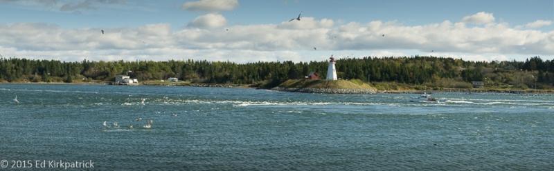 Incoming Lubec tide looking over to Campobello Island,New Brunswick, Canada